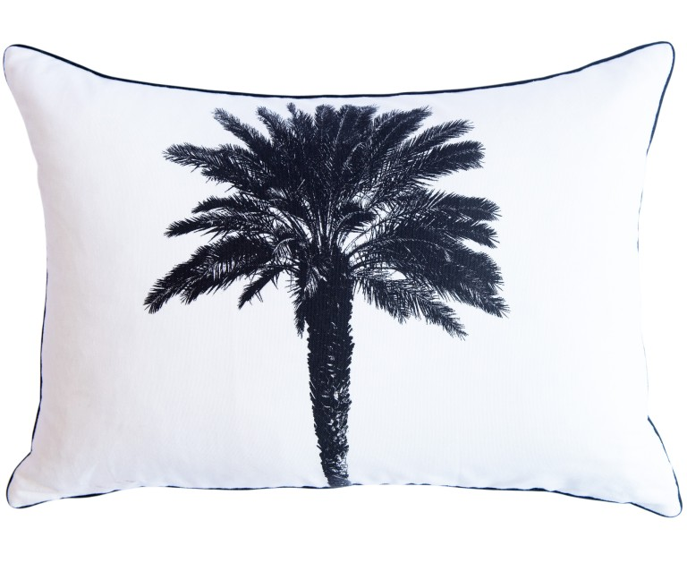 Palm_Tree_40x60_Scatter