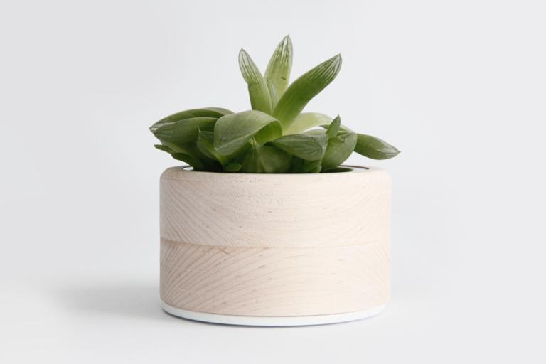 planter-small_1024x1024
